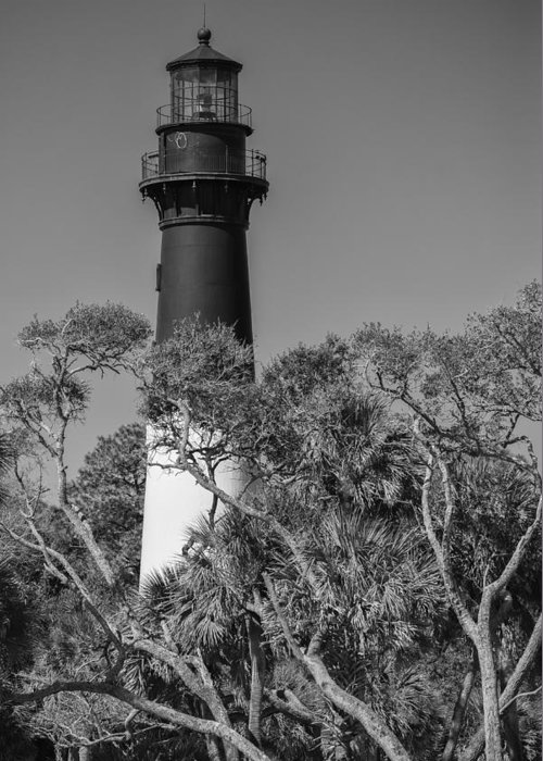 Sc Greeting Card featuring the photograph Hunting Island Light by Brian Young
