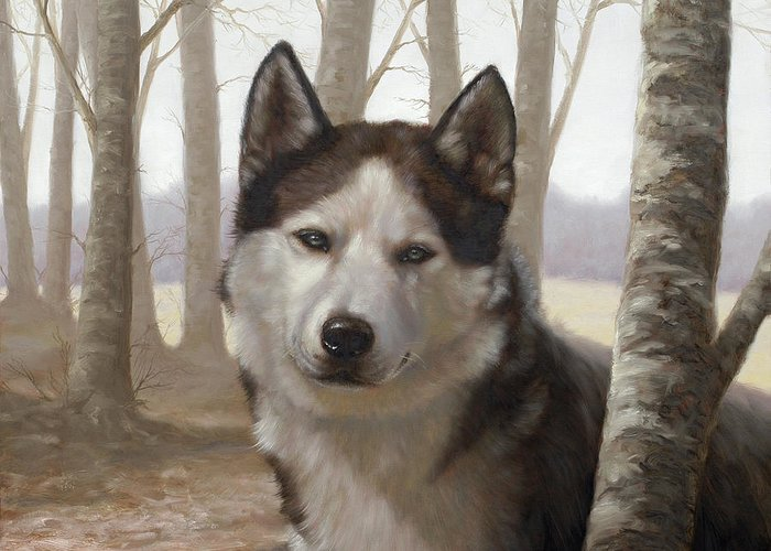 Husky Greeting Card featuring the painting Husky In The Woods by John Silver