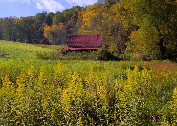 Appalachia Greeting Card featuring the photograph In The Heart Of Autumn by Debra and Dave Vanderlaan