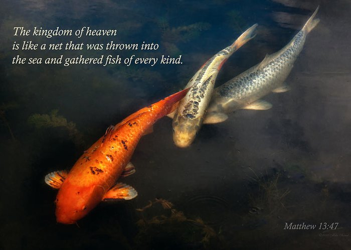Animal Greeting Card featuring the photograph Inspirational - Gathering Fish Of Every Kind - Matthew 13-47 by Mike Savad