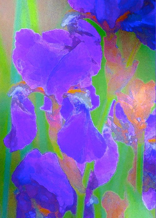 Floral Greeting Card featuring the photograph Iris 59 by Pamela Cooper