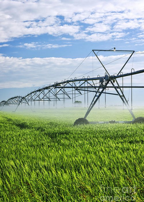 Irrigation Greeting Card featuring the photograph Irrigation Equipment On Farm Field by Elena Elisseeva