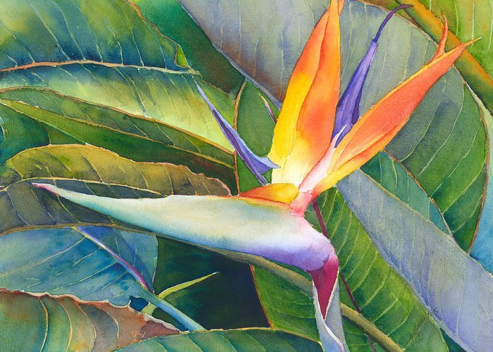 Bird Of Paradise Greeting Card featuring the painting Its A Bird by Judy Mercer