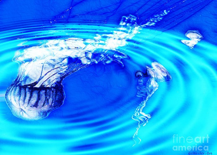Jellyfish Pool Greeting Card featuring the photograph Jellyfish Pool by Methune Hively