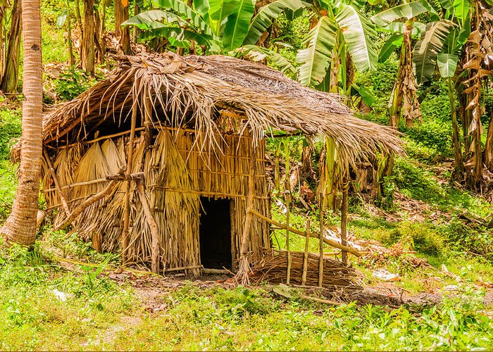 Asia Greeting Card featuring the photograph Jungle Hut In A Tropical Rainforest by Colin Utz