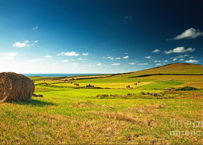 Nice Greeting Card featuring the photograph Landscape At Summer by Boon Mee