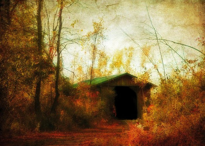 Fall Greeting Card featuring the photograph Late October by Gothicolors Donna Snyder