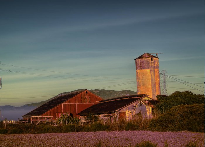 Petaluma Greeting Card featuring the photograph Leaning Silo by Bill Gallagher