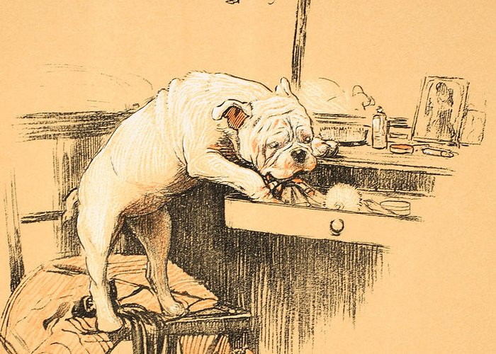 Dog Greeting Card featuring the painting Left Alone In Her Dressing Room by Cecil Charles Windsor Aldin