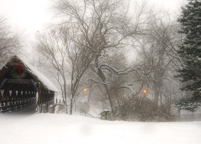 Winter Greeting Card featuring the photograph Let It Snow by Andrew Soundarajan