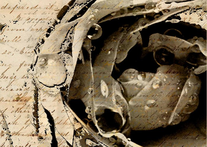 Greeting Card featuring the mixed media Life Vii by Yanni Theodorou