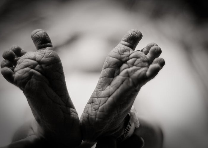 3scape Photos Greeting Card featuring the photograph Little Feet by Adam Romanowicz