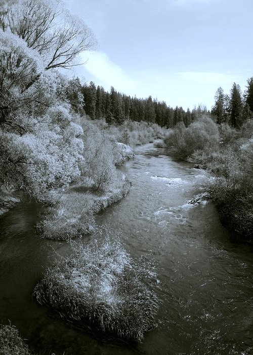 Spokane Greeting Card featuring the photograph Little Spokane River Beauty by Daniel Hagerman