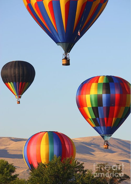 Hot Air Balloon Greeting Card featuring the photograph Looking Up by Carol Groenen