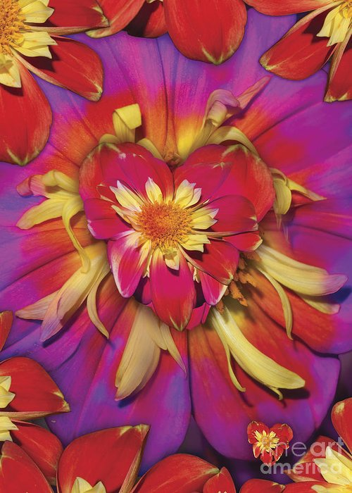 Abstract Greeting Card featuring the digital art Loveflower Orangered by Alixandra Mullins