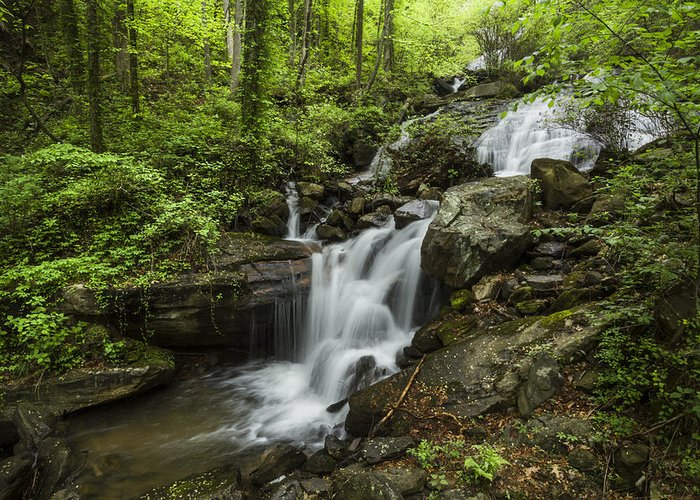 Appalachia Greeting Card featuring the photograph Lower Amicalola Falls by Debra and Dave Vanderlaan