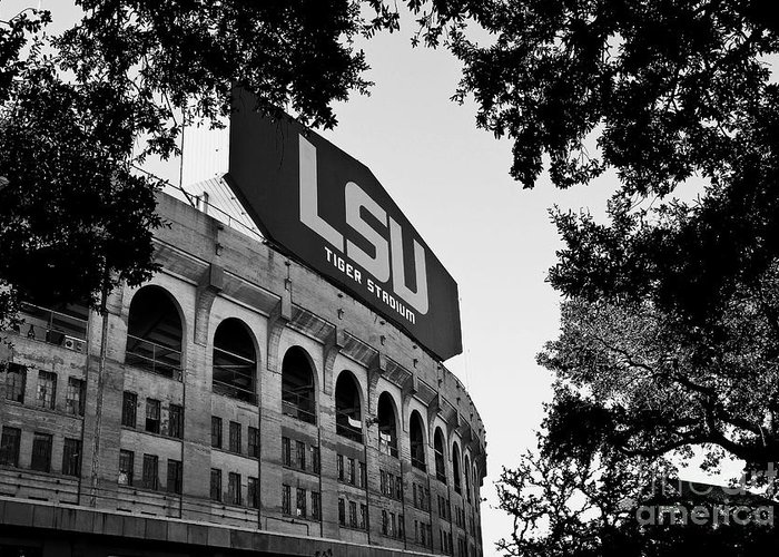 Lsu Greeting Card featuring the photograph Lsu Through The Oaks by Scott Pellegrin