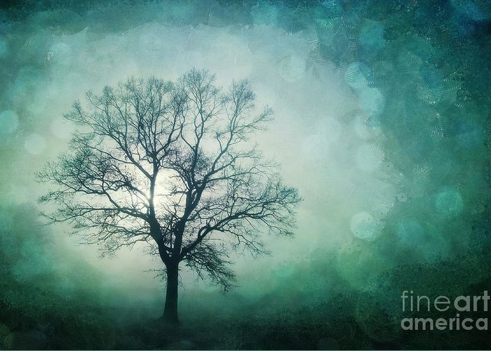 Tree Greeting Card featuring the photograph Magic Tree by Priska Wettstein