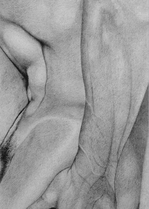 Male Nude Drawing Greeting Card featuring the drawing Male Nude 2 by Stefano Campitelli