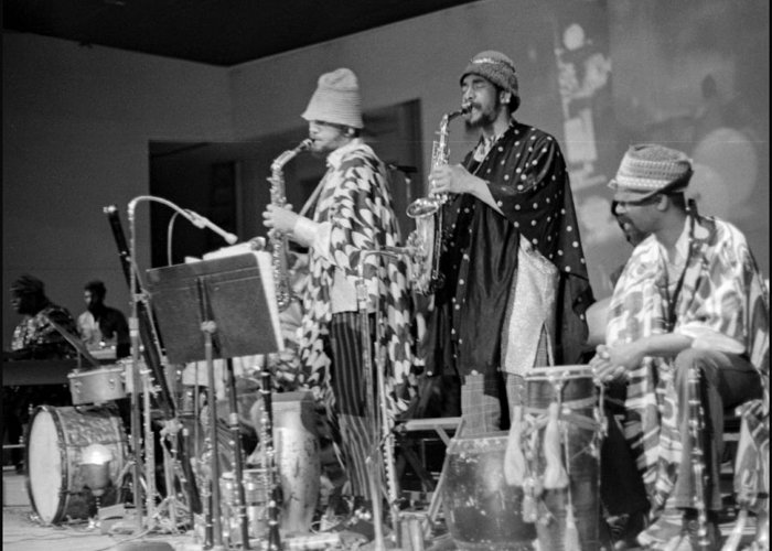 Sun Ra Arkestra At Freeborn Hall Greeting Card featuring the photograph Marshall Allen And Danny Davis by Lee Santa