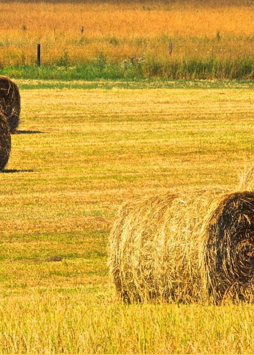 Midwest Greeting Card featuring the photograph Midwest Farming by Frozen in Time Fine Art Photography