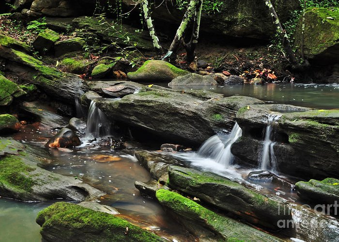 Photography Greeting Card featuring the photograph Mini Waterfalls by Kaye Menner