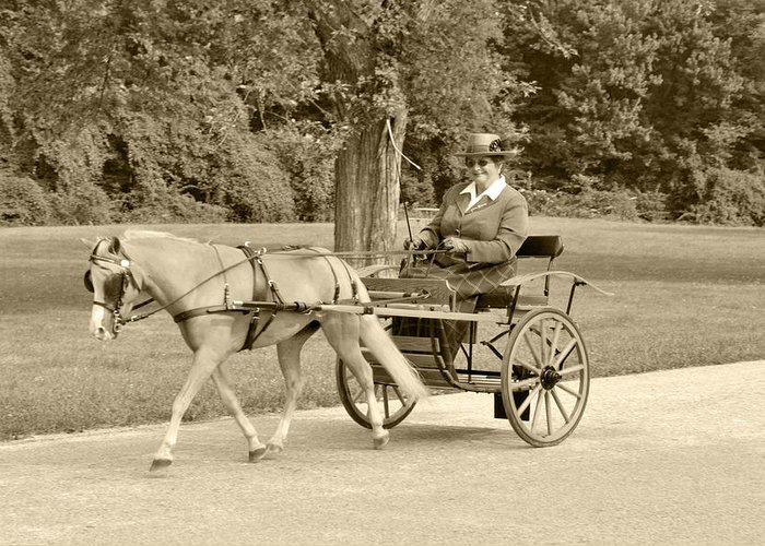 Miniature Two Wheel Cart Greeting Card featuring the photograph Miniature Two Wheel Cart by Wayne Sheeler