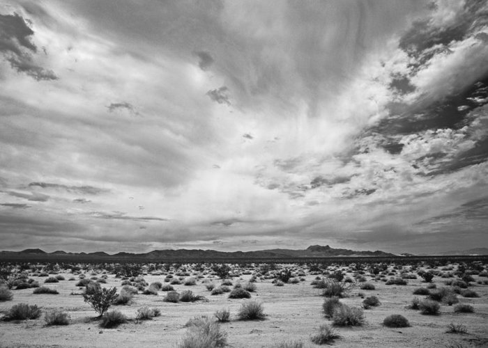 Pentax 67ii Greeting Card featuring the photograph Mojave National Preserve by Mike Herdering