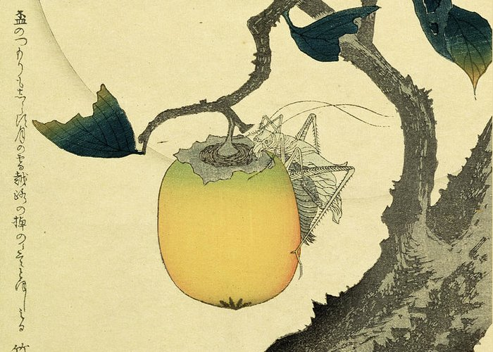 Japanese Greeting Card featuring the drawing Moon Persimmon And Grasshopper by Katsushika Hokusai