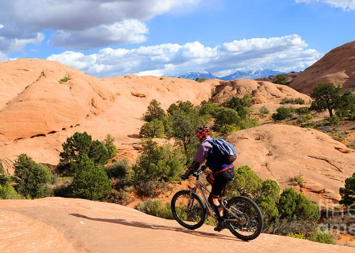 Moab Greeting Card featuring the photograph Mountain Biking Moab Slickrock Trail - Utah by Gary Whitton