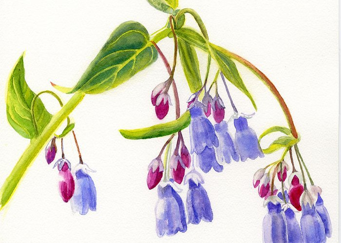 Bluebells Greeting Card featuring the painting Mountain Bluebells by Sharon Freeman