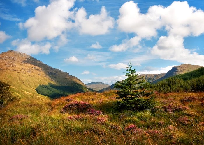 Jenny Rainbow Fine Art Photography Greeting Card featuring the photograph Mountain Pastoral. Rest And Be Thankful. Scotland by Jenny Rainbow
