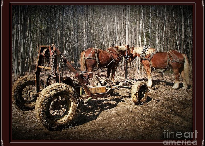 Mud Season Greeting Card featuring the photograph Mud Season - With Border by Joy Nichols