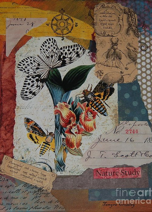 Nature Greeting Card featuring the painting Nature Study by Tamyra Crossley