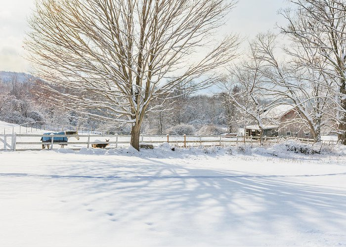 New England Winter Greeting Card featuring the photograph New England Winter by Bill Wakeley