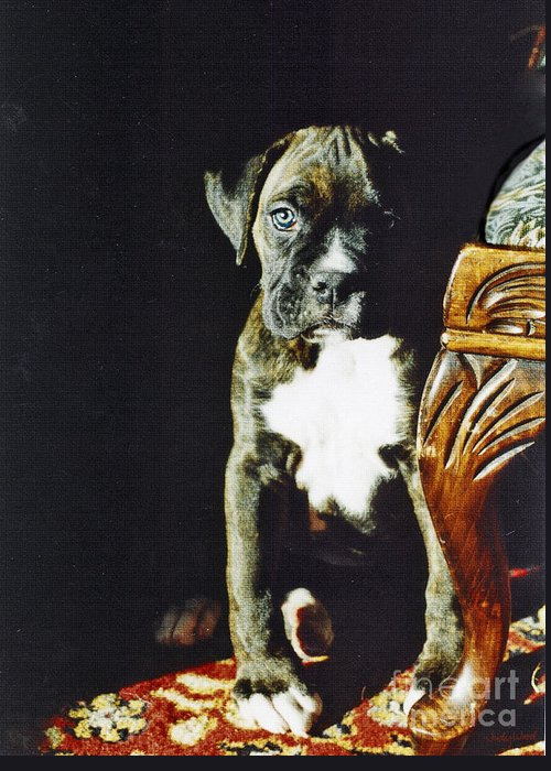 Boxer Dog Greeting Card featuring the digital art New To The World by Judy Wood