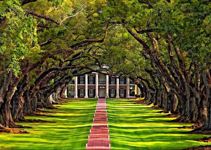 Oak Alley Plantation Greeting Card featuring the photograph Oak Alley by Steve Harrington