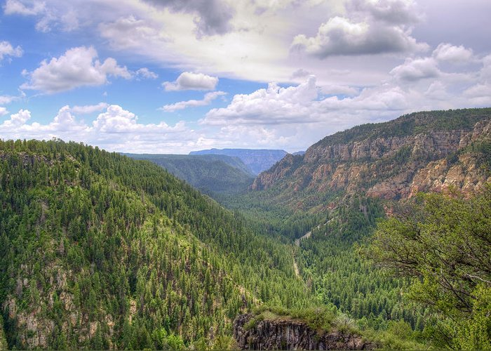 Oak Greeting Card featuring the photograph Oak Creek Canyon by Ricky Barnard