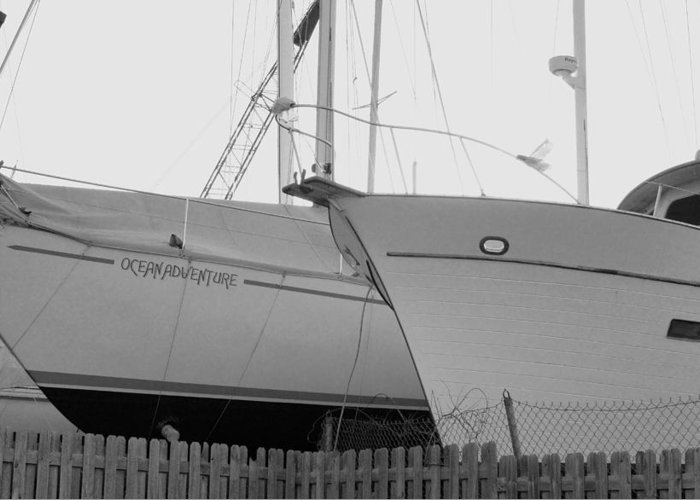 Ocen Adventure Until Then The Two Are In Dry Dock Sailboats In Black And White Monochrome Sailboats Seppala's Black And White Sailboats Lakeshore Coastal Living Rosemarie E Seppala Coastal Living Boat Scape Sailboats In Storage Sailboat Coastal Living Room Or Den Artwork Pure Michigan Boat Scape Boats Tied Down Michigan Boat Scape Water Scape Sailboats Coastal Shipyard Michigan Coast Marina Sailboats Docked Dry Docked Sailboats Landscape Sailing Ships Of Michigan Greeting Card featuring the photograph Ocean Adventure Until Then The Two Are In Dry Dock Monochrome by Rosemarie E Seppala
