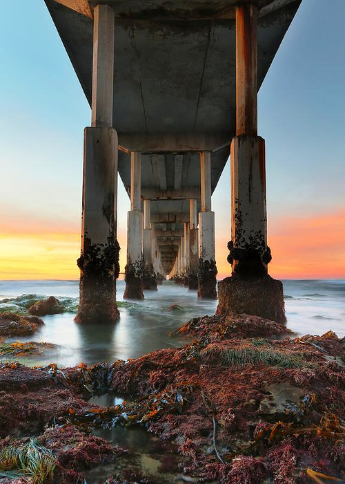 Larry Marshall Greeting Card featuring the photograph Ocean Beach California Pier 2 by Larry Marshall