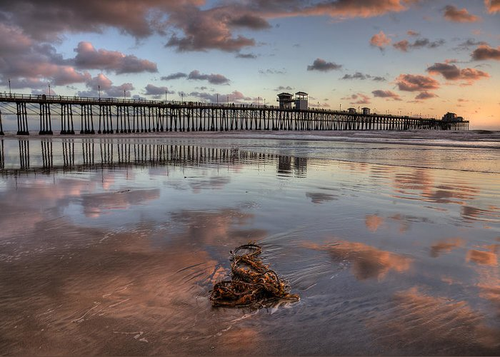 California Greeting Card featuring the photograph Oceanside Pier Seaweed by Peter Tellone