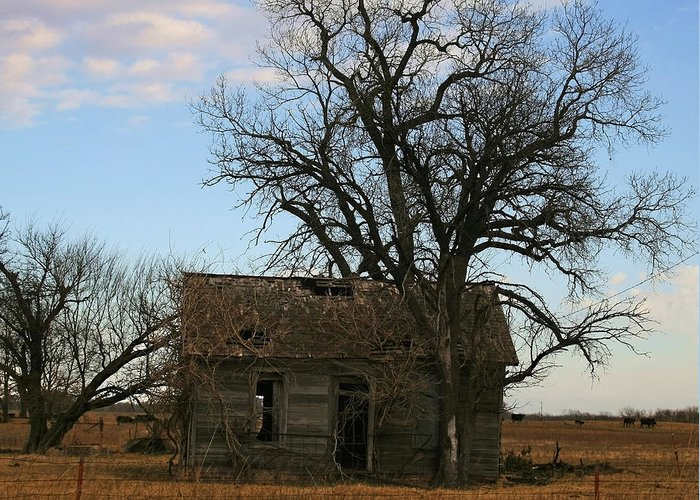 Oklahoma Shack Greeting Card featuring the photograph Oklahoma Shack by Ellen Henneke