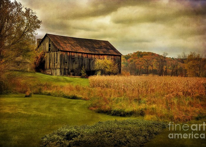 Barn Greeting Card featuring the photograph Old Barn In October by Lois Bryan