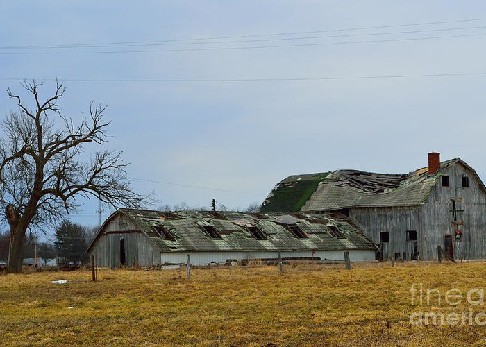 Old Barns Greeting Card featuring the photograph Old Barns In The Heartland by Alys Caviness-Gober