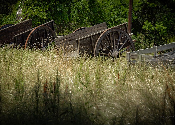 Old Wagons Greeting Card featuring the photograph Old Cotton Bale Wagons by Allen Biedrzycki