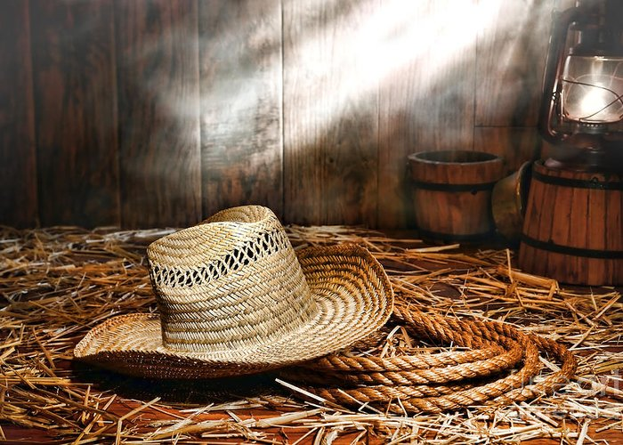 Ranch Greeting Card featuring the photograph Old Farmer Hat And Rope by Olivier Le Queinec