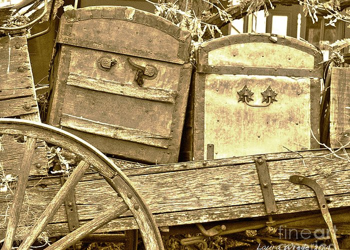 Genoa Greeting Card featuring the photograph Old Trunks In Genoa Nevada by Artist and Photographer Laura Wrede