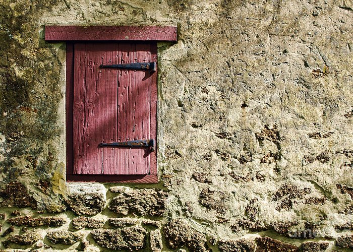 Wall Greeting Card featuring the photograph Old Wall And Door by Olivier Le Queinec