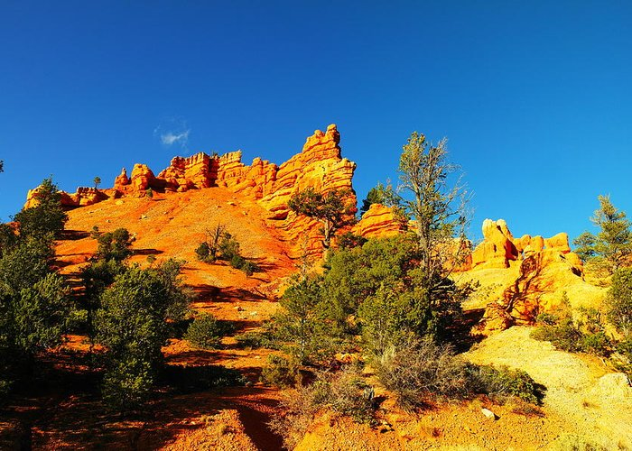 Landscape Greeting Card featuring the photograph Orange Foreground A Blue Blue Sky by Jeff Swan