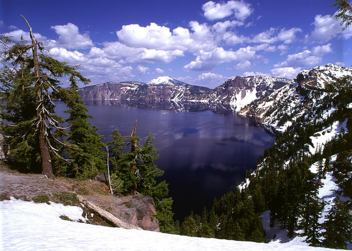 No People; Horizontal; Outdoors; Day; Elevated View; Cloud; Geology; Extreme Terrain; Mountain Range; Snowcapped; Forest; Tree; Idyllic; Tranquility; Scenics; Beauty In Nature; Oregon; Usa; Rock; Crater Lake Greeting Card featuring the photograph Oregon Crater Lake by Anonymous